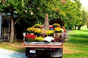 Cindy Croal - Autumn Festive Pickup...