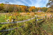 Split Rail Fence Photo Metal Prints - Autumn Field Metal Print by Bill  Wakeley