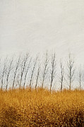 Sandra Cunningham - Autumn field of tall grass/digital painting
