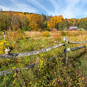 Split Rail Fence Photo Prints - Autumn Field Square Print by Bill  Wakeley