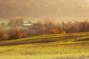 Finger Lakes Photos - Autumn Fields by Michele Steffey