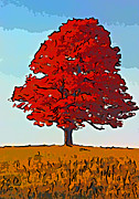 Sugar Maple Framed Prints - Autumn Flame line art Framed Print by Steve Harrington