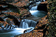 Twists Posters - Autumn Flows Forth Poster by Robert Harmon