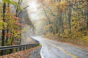 Williams Photos - Autumn Fog Monongahela National Forest by Thomas R Fletcher