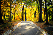 Central Park Prints - Autumn Foliage in Central Park New York City Print by Sabine Jacobs