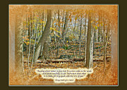 George Washington Carver Metal Prints - Autumn Forest - George Washingron Carver Quote Metal Print by Mother Nature