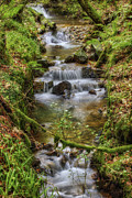 Water Flowing Prints - Autumn Forest Stream v2 Print by Ian Mitchell
