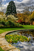 Water Feature Posters - Autumn Garden Poster by Adrian Evans