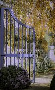 Autumn Garden Print by Julie Palencia