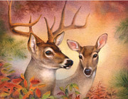 Tracy Herrmann - Autumn Gently Deer