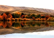 Yakima Valley Framed Prints - Autumn Glow on the Yakima River Framed Print by Carol Groenen