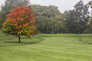 Golf Green Prints - Autumn Golf  Print by John McGraw