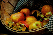 Homey Posters - Autumn Harvest Poster by Lois Bryan