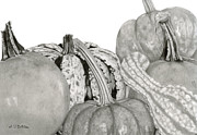 Cornucopia Drawings - Autumn Harvest On White by Sarah Batalka