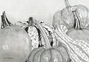 Cornucopia Drawings - Autumn Harvest by Sarah Batalka