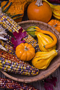 Corns Posters - Autumn Harvest still life Poster by Garry Gay