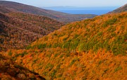 Cabot Prints - Autumn hillsides at Cape Breton National Park Print by Jetson Nguyen