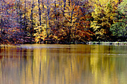 Bruce Patrick Smith - Autumn Hues at the Pond