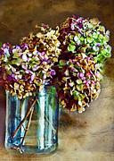 Dried Hydrangeas Prints - Autumn Hydrangeas Photoart Print by Debbie Portwood