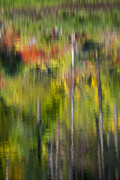 Autumn Landscape Metal Prints - Autumn Impressions Metal Print by Mike  Dawson