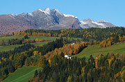 Autumn In Austria Print by Phil Banks