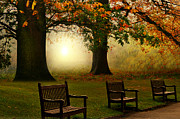 Benches Photo Originals - Autumn In london  by Chrissie Judge