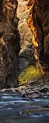 Andrew Soundarajan - Autumn in the Narrows