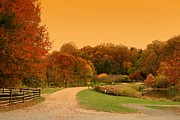 Autumn Prints Framed Prints - Autumn In The Park - Holmdel Park Framed Print by Angie McKenzie