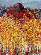 Regina Valluzzi - Autumn in the Pioneer Valley