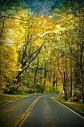 Gatlinburg Tennessee Prints - Autumn in the Smokeys Print by Sara Whaley