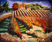 Vineyard Art Originals - Autumn in Vineyard by Olivia Negrin