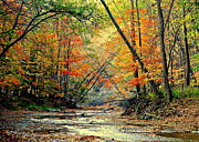 Ideal Photo Posters - Autumn in Wonderland Poster by Robert Harmon