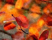 Karyn Robinson - Autumn