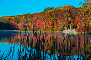 Turning Leaves Prints - Autumn Lake Print by Anthony Sacco