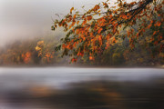 Fog Glow Framed Prints - Autumn Lake Framed Print by Bill  Wakeley