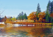 Joyce Dickens Digital Art Prints - Autumn Lake In The Woods Print by Joyce Dickens