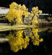 Autumn Lake Reflection Print by Patrick Derickson