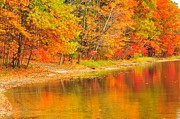 Serenity Photos - Autumn Lakeshore by Terri Gostola