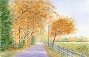 Peter Farrow Metal Prints - Autumn Lane - Royden Park - Wirral Metal Print by Peter Farrow