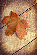 Wooden Table Prints - Autumn Leaf Print by Christopher and Amanda Elwell