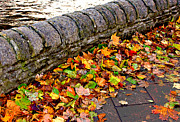 Stone Path Photos - Autumn Leaves and an Old Stone Wall in Ireland by Louise Heusinkveld