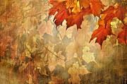 Andrea Kollo - Autumn Leaves