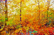 Autumn Leaves Print by George Rossidis