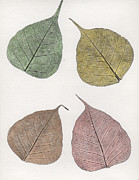 Leaves Reliefs Posters - Autumn Leavs Poster by Suzette Broad