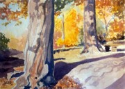 Todd Derr Prints - Autumn Light Print by Todd Derr