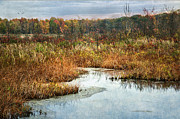 Park Scene Digital Art Prints - Autumn Marshland Print by Dale Kincaid