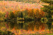 """autumn Foliage New England"" Prints - Autumn mirror reflection Print by Jeff Folger"
