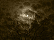 Moonlit Night Photos - Autumn Moon 1 by Christine Perry
