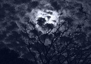 Moonlit Night Photos - Autumn Moon 3 by Christine Perry