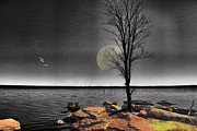 Lone Tree Prints - Autumn Moon Print by Betty LaRue